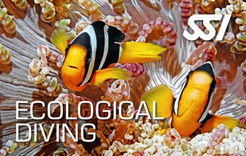 Ecological Diving biologie